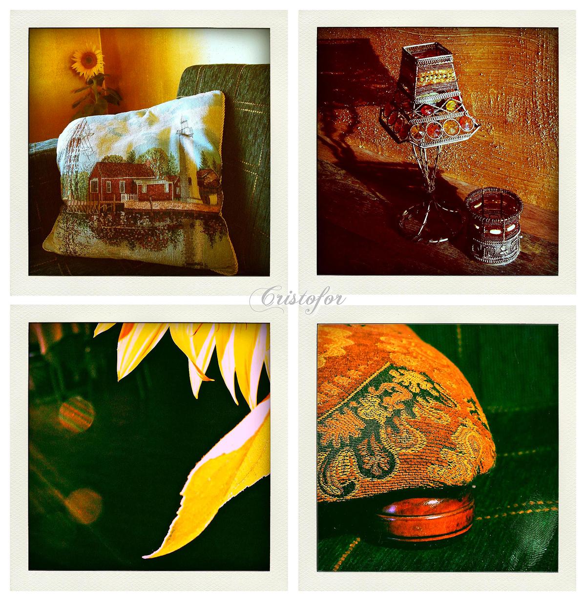 Polaroids by Cristina Schek