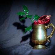 Pomegranate by Cristina Schek (1)