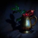 Pomegranate by Cristina Schek (10)