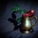Pomegranate by Cristina Schek (11)