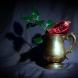 Pomegranate by Cristina Schek (12)