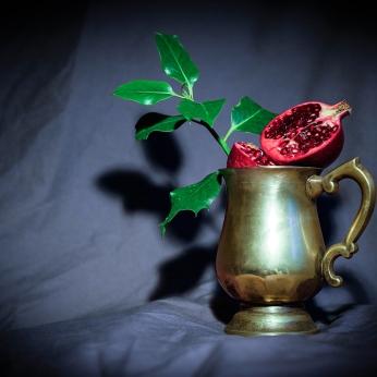 Pomegranate by Cristina Schek (2)