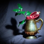 Pomegranate by Cristina Schek (22)