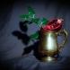 Pomegranate by Cristina Schek (24)