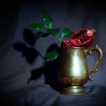 Pomegranate by Cristina Schek (25)