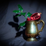 Pomegranate by Cristina Schek (26)