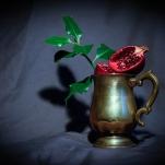 Pomegranate by Cristina Schek (27)