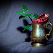 Pomegranate by Cristina Schek (3)