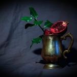 Pomegranate by Cristina Schek (30)