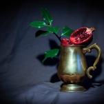 Pomegranate by Cristina Schek (5)