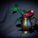 Pomegranate by Cristina Schek (6)