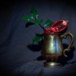 Pomegranate by Cristina Schek (7)