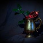 Pomegranate by Cristina Schek (8)