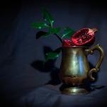 Pomegranate by Cristina Schek (9)