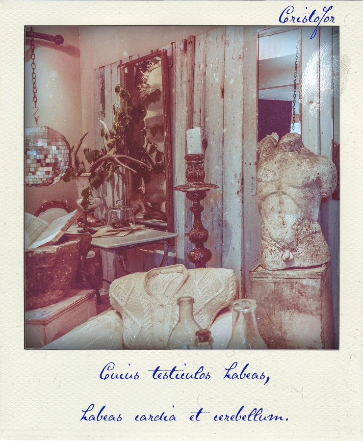 When you have them by the balls, the heart and mind will follow - Polaroid Stories by Cristina Schek