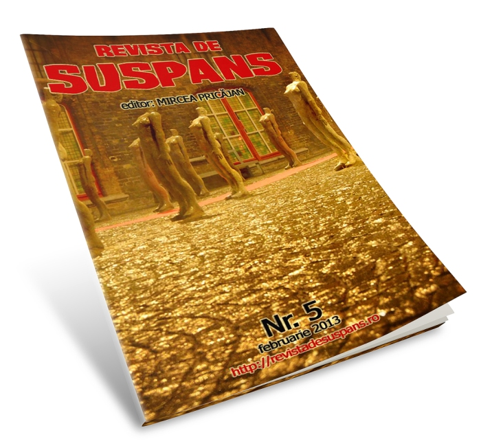 Cover Image by Cristina Schek for Suspense Review, Issue 5, 2013