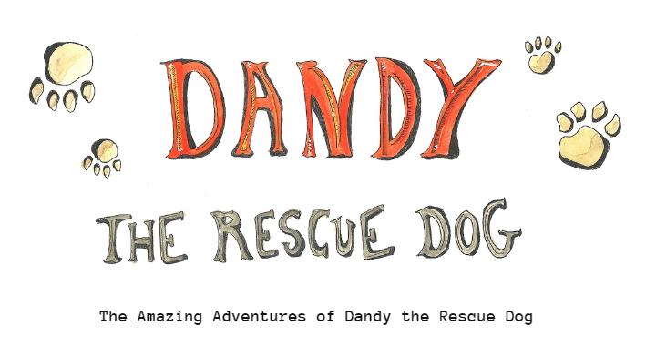 Dandy The Rescue Dog Website design by Cristina Schek