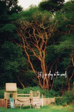 Woods II, Cristina Schek